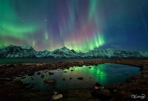 Aurora Borealis Reflects in Water
