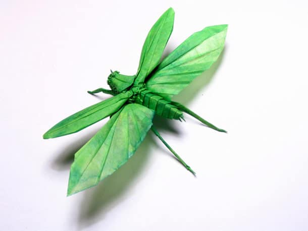 One Paper Sheet Insect Origami