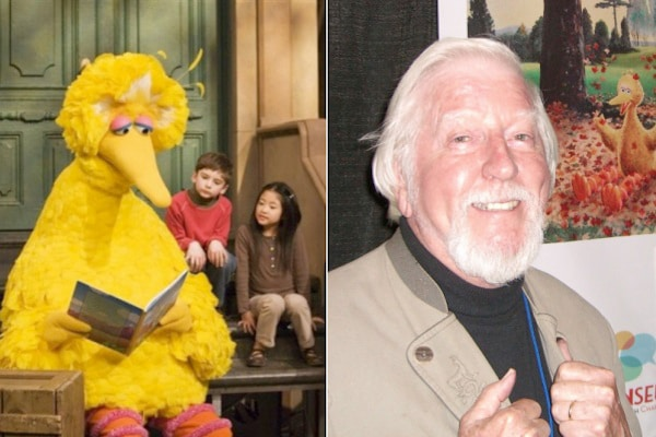 Actor Inside Big Bird Costume