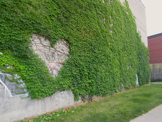 Dead Hearts: A Collection Of Heart Art In Public Spaces [12 Pics]