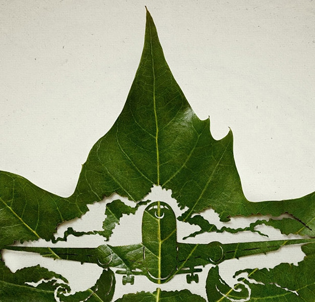 Leaf Carvings: Cars, Trucks & Airplanes Cut Into Leaves