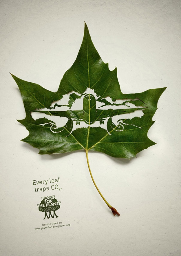 Airplane Carved In A Leaf