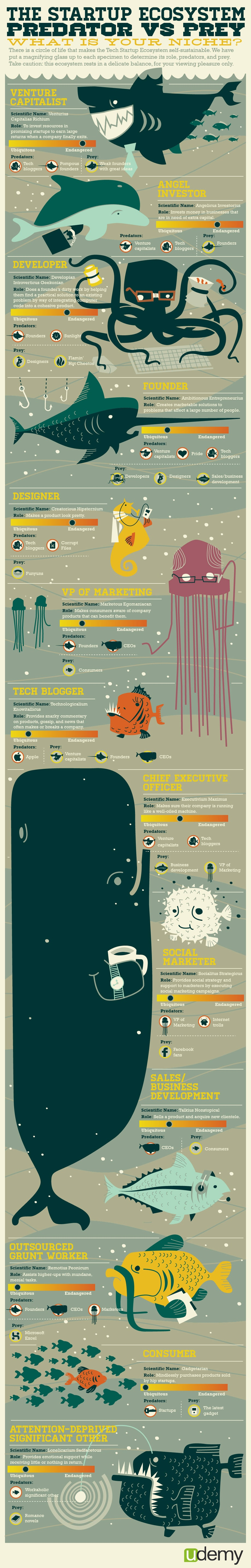 The Startup Ecosystem: Tech Roles Compared [Infographic]