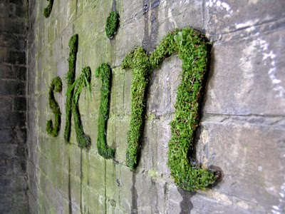 natural-green-moss-graffiti