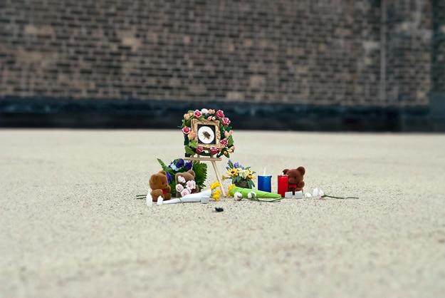 Bug-Memorial-Funeral-Project
