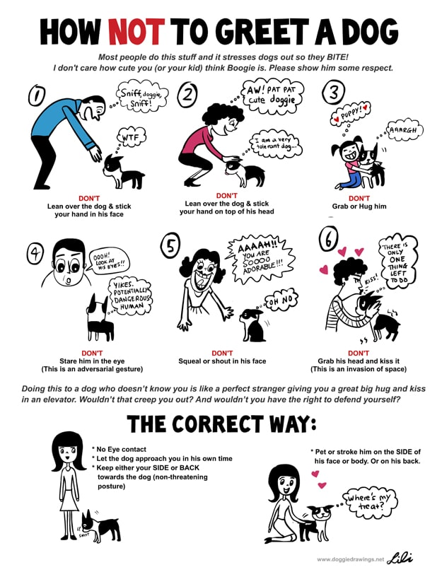 Understand-Dog-Language-Chart