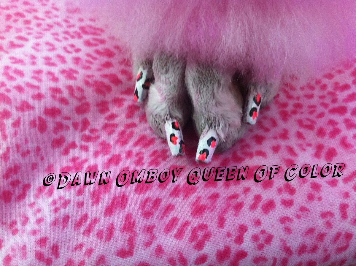 Doggie Pedicures: Transform Your Pup Into A Beauty Queen