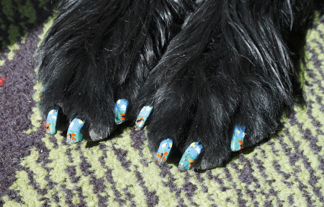 Strange-Dog-Pedicure-Designs