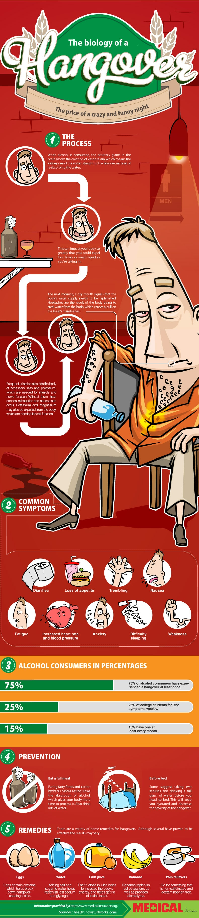 Biology Of A Hangover & How To Prevent It [Infographic]