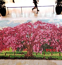 Massive Cherry Blossom Tree Painting Made Out Of Cupcakes