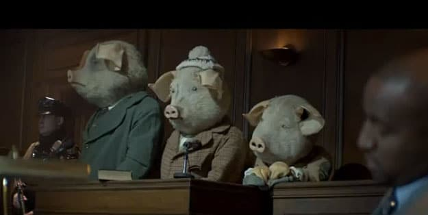 pigs courtroom on trial