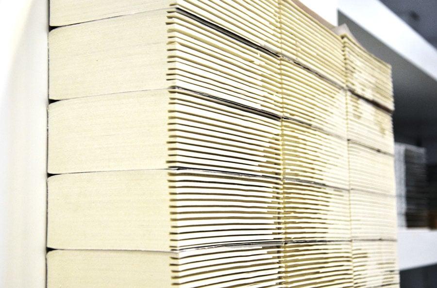 Mark-Zuckerberg-Book-Sculpture