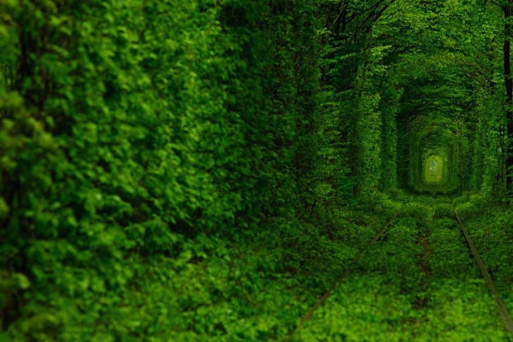 Ukraine-Tunnel-Of-Love