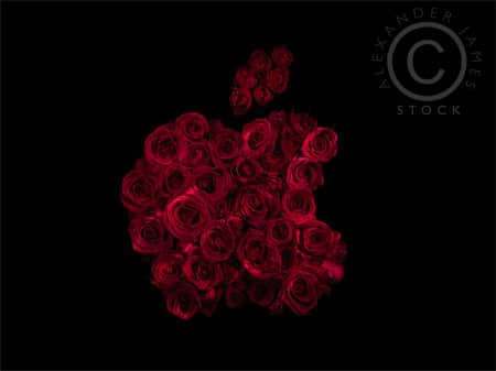 1366x768 apple logo flower - photo #27