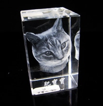 3D Crystal Engraving Puts 3D Photographs On Your Bookshelf