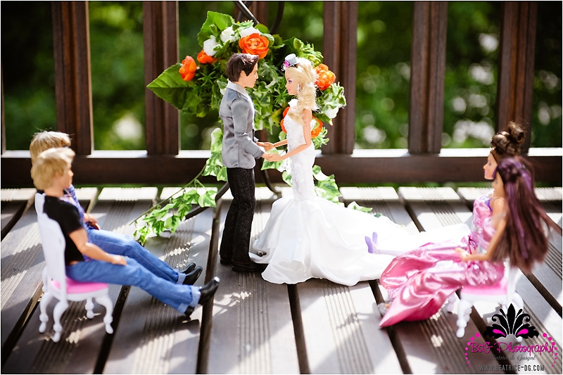 Barbie-Ken-Wedding-Album-Photos