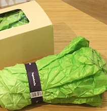 Vegetabrella: The Umbrella Inspired By A Head Of Lettuce