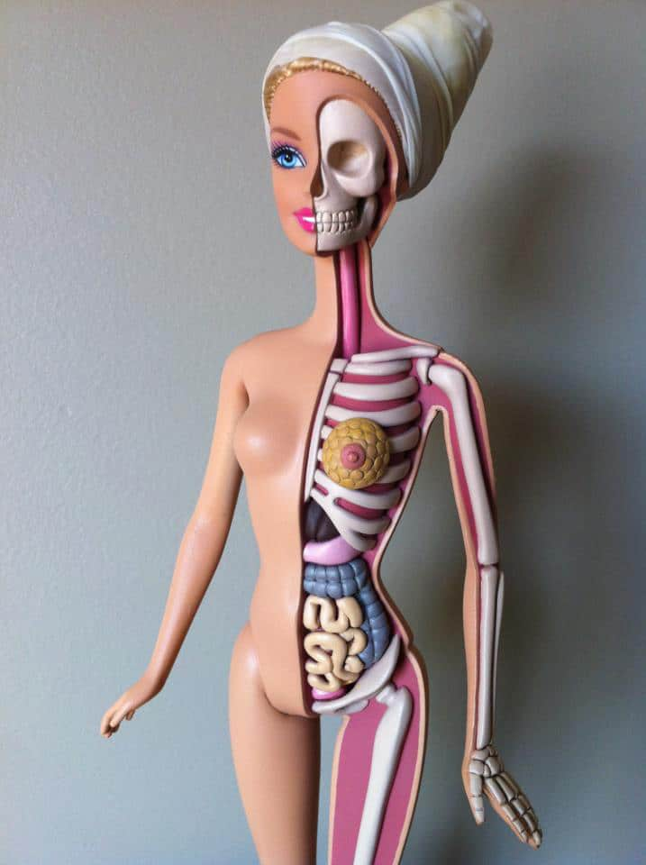 The Barbie Design That Exposes Her Real Anatomy
