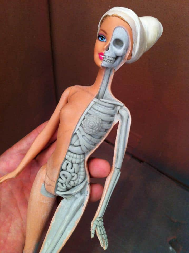 Barbie-Anatomy-Jason-Freeny