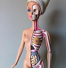 Barbie-Design-Exposes-Her-Anatomy