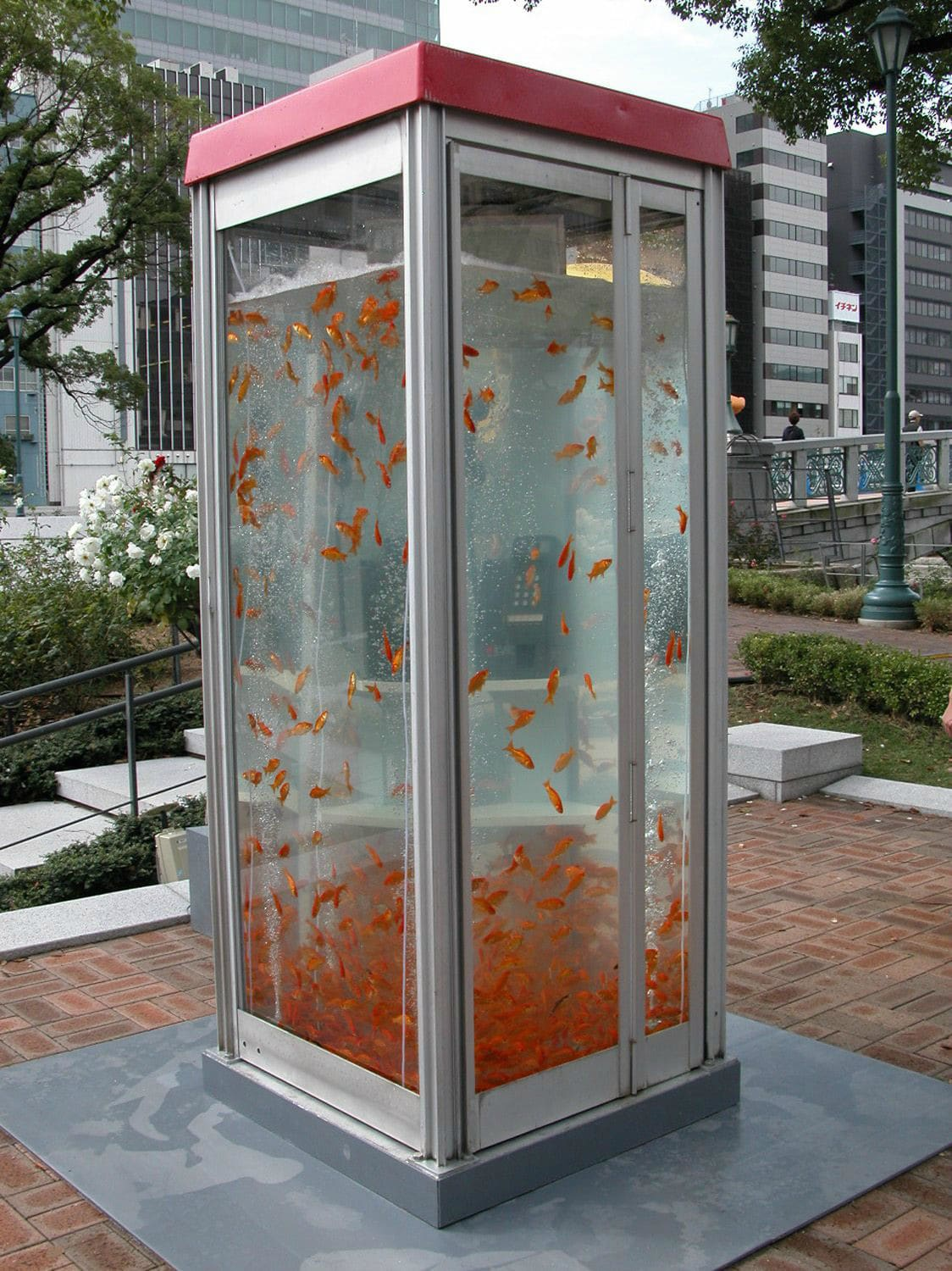 Retro Phone Booths Transformed Into Massive Goldfish Aquariums
