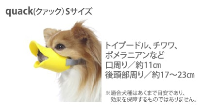 dog-muzzle-duck-concept