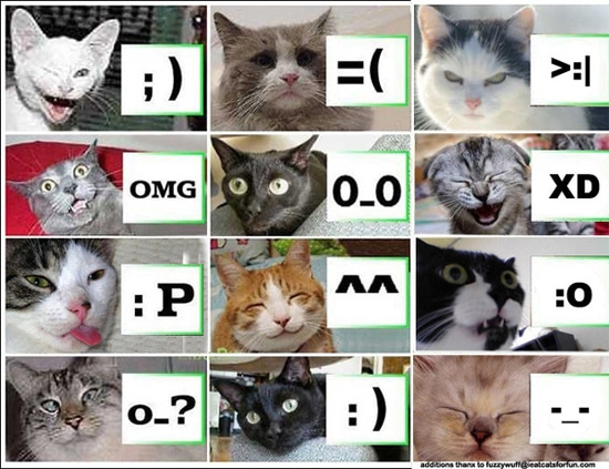 cats-guide-to-emoticons-chart