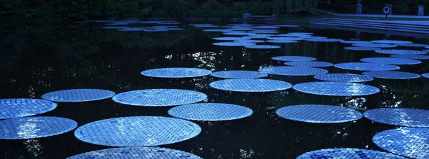 upcycled-cds-water-lily
