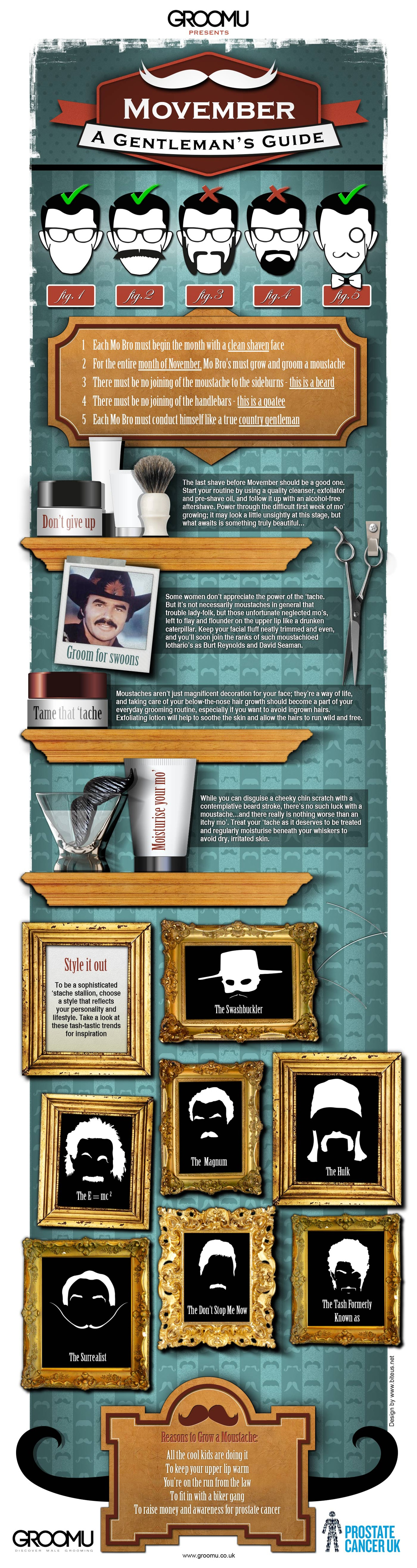 Movember: A Gentleman's Guide To The Perfect Stache [Infographic]