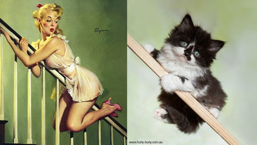 Your Daily Cute: Cats Posing Like Pin-Up Girls [10 Pics]