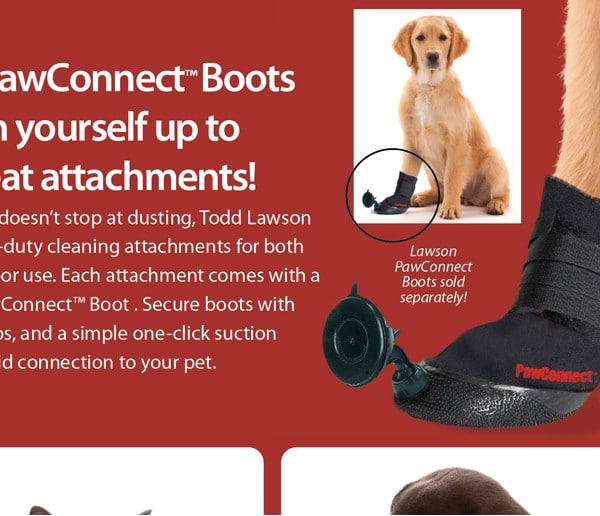floor-sweeping-dog-shoes