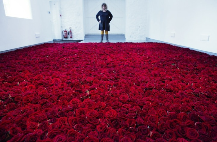 lifespan-of-red-fresh-roses