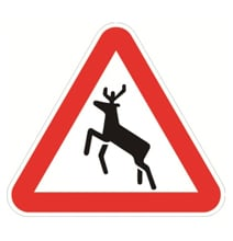 Road Signs Don't Always Mean What You Think…