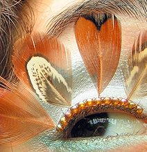 Extreme Eyelashes: The Most Outrageous Eye Jewelry Ever Created