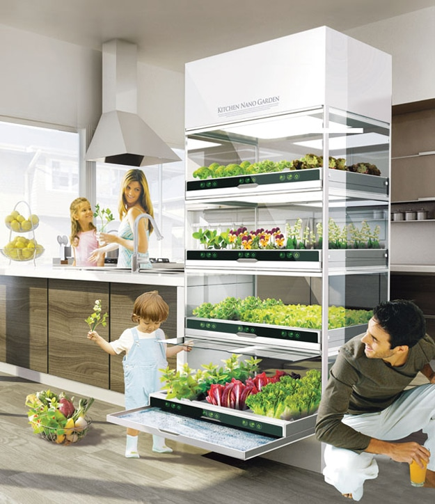 kitchen-nano-vegetable-garden-concept