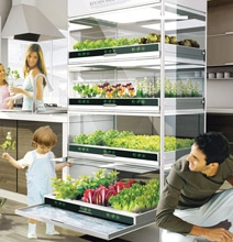 Grow A High Tech Vegetable Garden Right In Your Kitchen