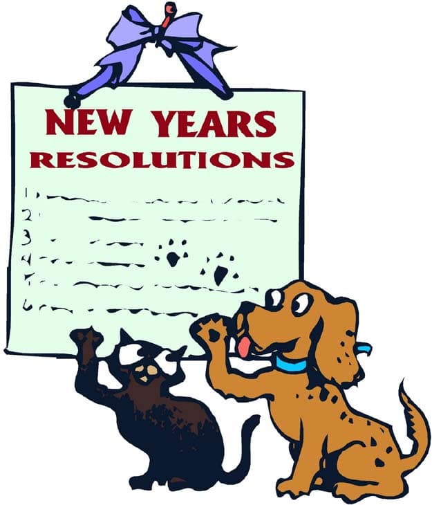How To: Keep Your New Year's Resolutions