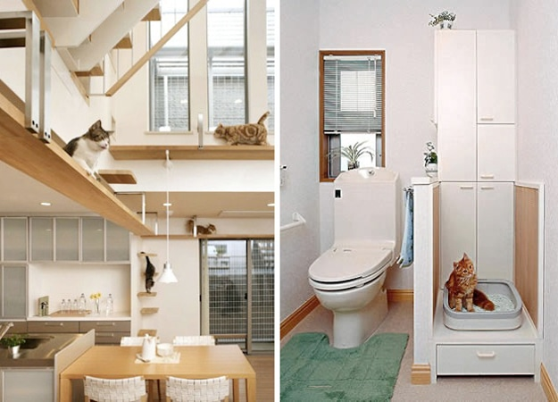 Feline Architecture: This Is Your Cat's Dream Home
