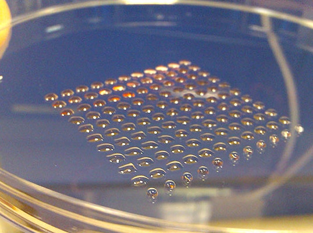 3d-printed-stem-cell-clusters