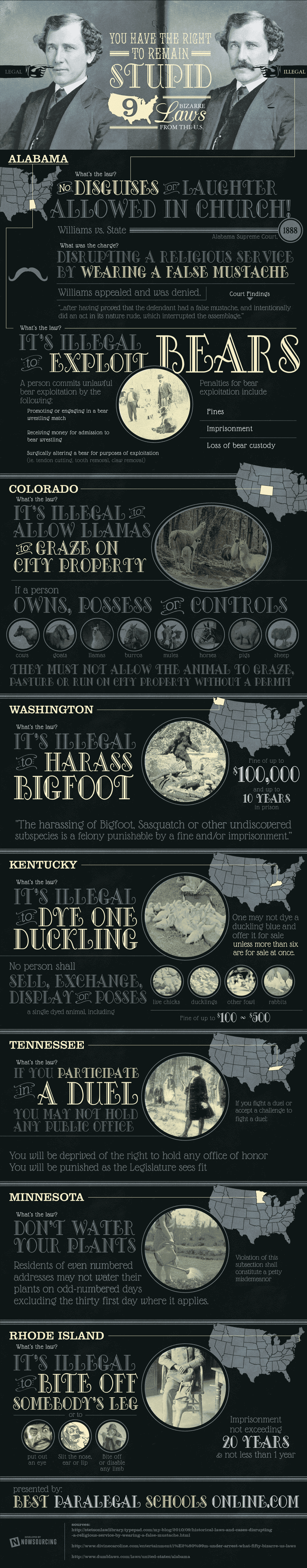 9 Bizarre Laws In American History [Infographic]