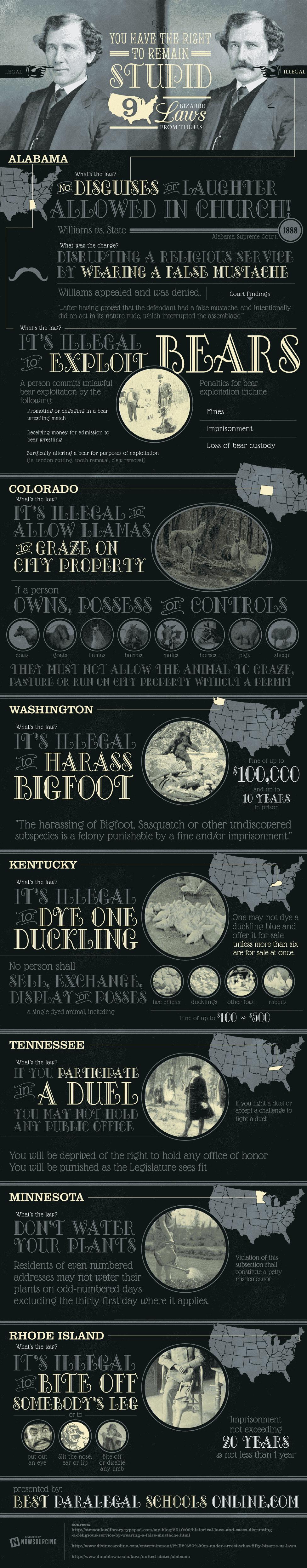 9-bizarre-laws-america-infographic