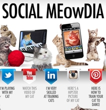 Social Media Sites Explained With Adorable Kittens [Infographic]