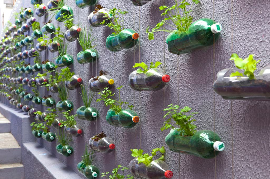 recycled plastic soda bottles - Wall Garden