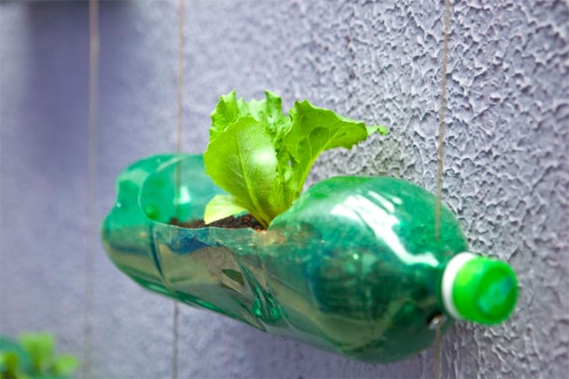 recycled-plastic-soda-bottles