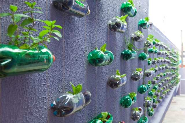 Spunky urban wall garden created from recycled plastic for Wealth from waste ideas