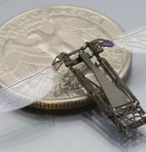 3D Printed Micro-Drones Are A Miracle To Behold