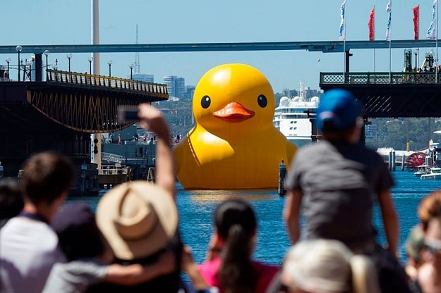 Rubber Duck Entering Harbour