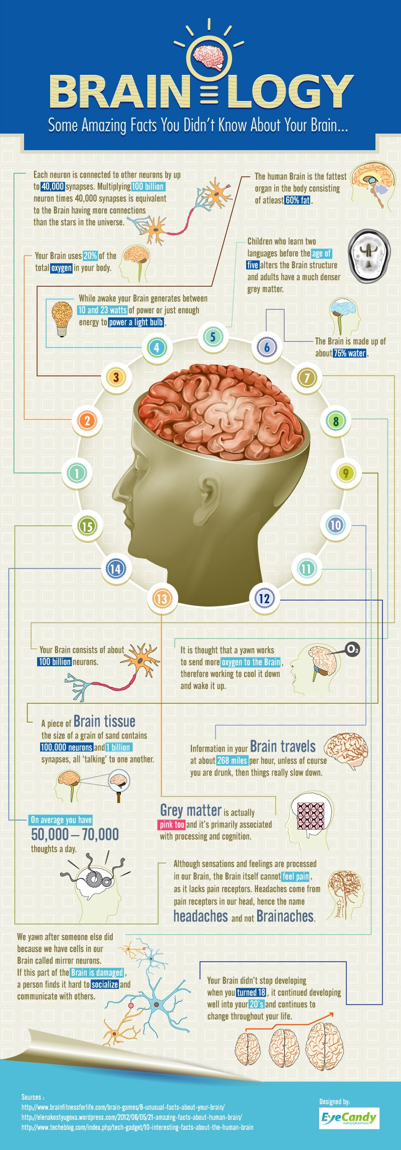 Brainology: 15 Intriguing Facts About Your Brain [Infographic]