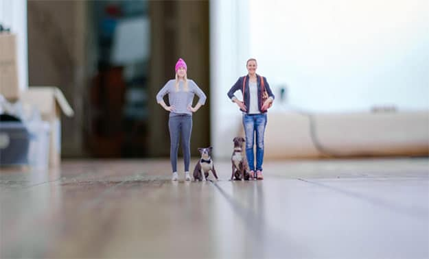 The Most Realistic 3D Printed Action Figures (Of You And Your Pet)