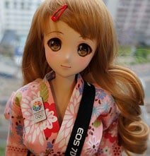 Private: 3D Printed Interactive Robotic Smartphone Controlled Manga Doll